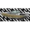 Тенты для Quintrex: ходовые и транспортировочные, носовые